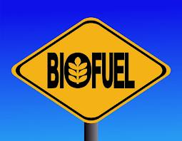 bio_fuel-1