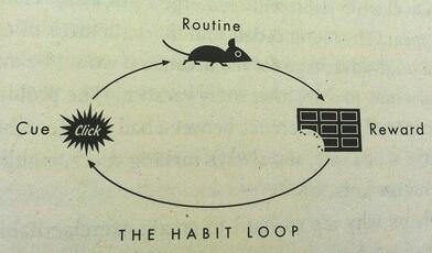 the-habit-loop-charles-duhigg-1024x601