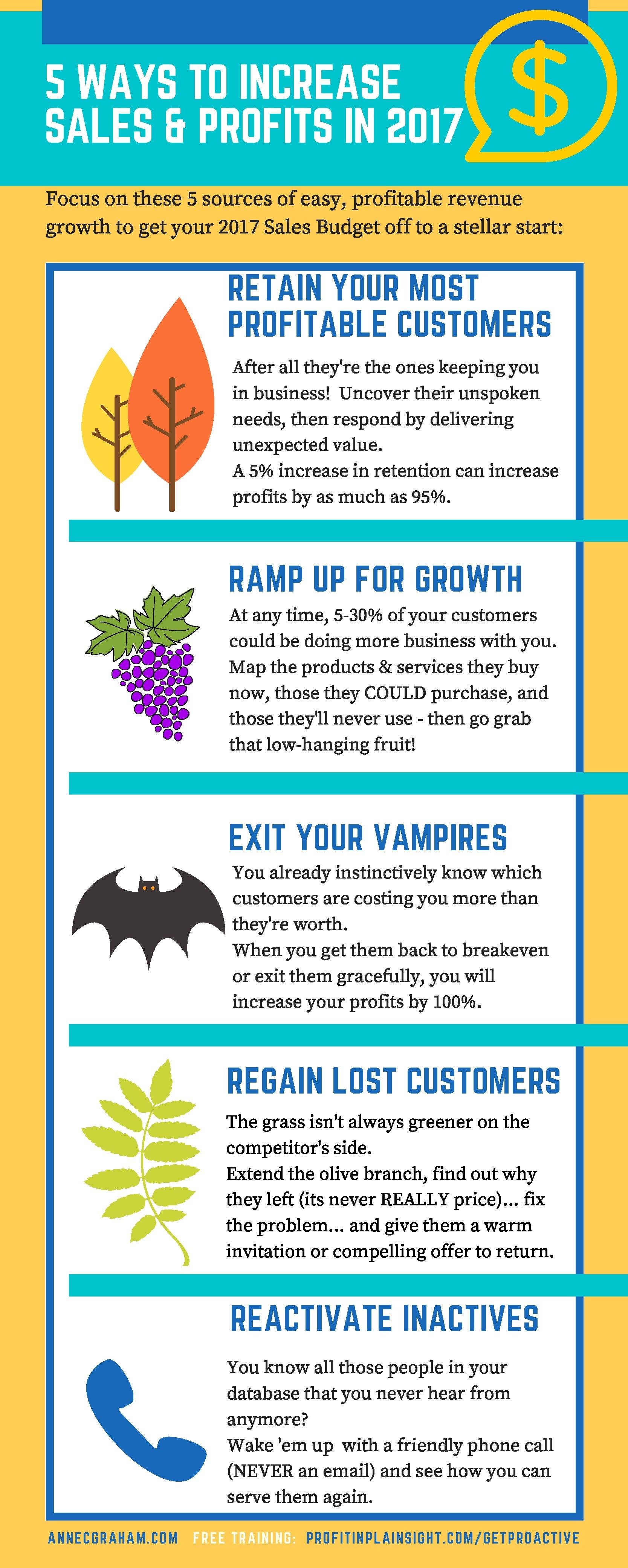 5 Ways to Increase Sales and Profit in 2017.jpg