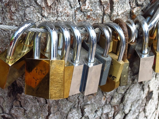 love-locks-1961156_1280-1.jpg